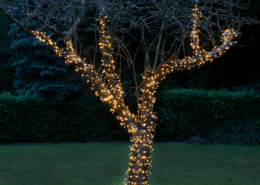 Amare LED Lichterkette